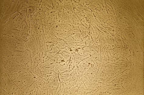 Muster-Nr. 2461