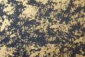 <h3></h3> <h3>Sample No. 7483</h3> <b>Texture</b>: flakes&nbsp; |&nbsp; <b>Surface</b>: ducat double gold behind glass